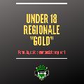 https://www.basketmarche.it/immagini_articoli/17-09-2019/tutto-campionato-under-regionale-gold-squadre-iscritte-parte-ottobre-120.png