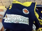 https://www.basketmarche.it/immagini_articoli/17-09-2019/victoria-fermo-lavoro-rinforzi-roster-120.jpg