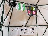 https://www.basketmarche.it/immagini_articoli/18-02-2019/posticipo-orsal-ancona-supera-volata-junior-porto-recanati-120.jpg