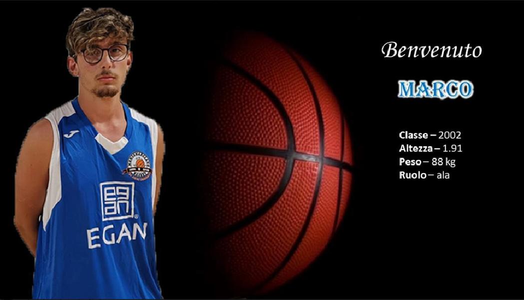 https://www.basketmarche.it/immagini_articoli/18-07-2019/ufficiale-anche-giovane-marco-angeloni-roster-montemarciano-20192020-600.png