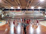 https://www.basketmarche.it/immagini_articoli/19-03-2019/marotta-basket-decimato-supera-fatica-lupo-pesaro-120.jpg