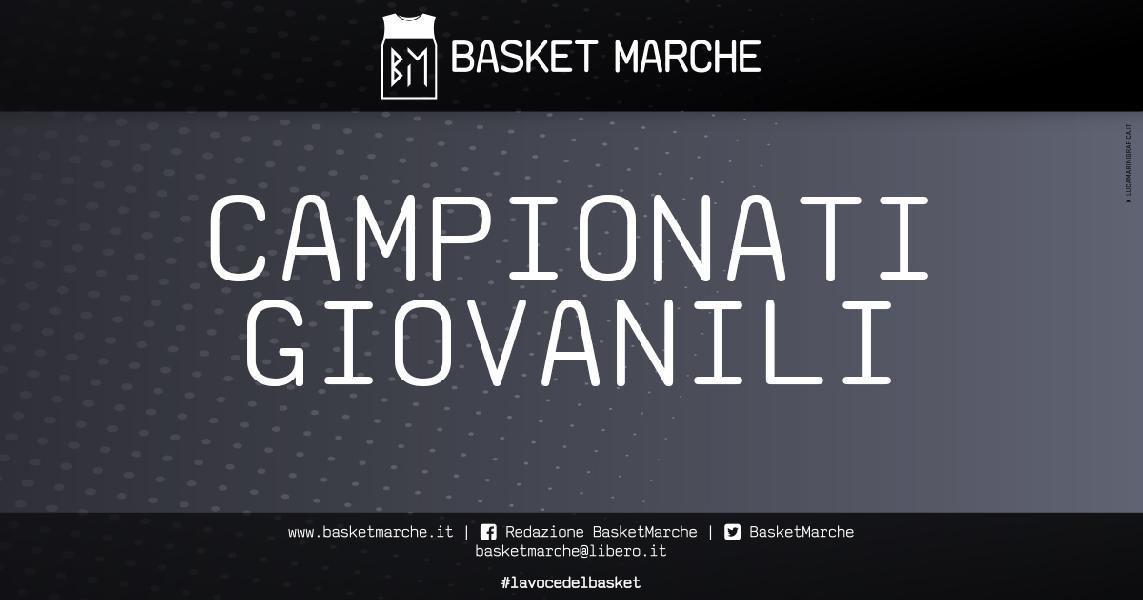 https://www.basketmarche.it/immagini_articoli/19-05-2020/giovanili-valuta-ritorno-campionato-under-eccellenza-stagione-20202021-600.jpg