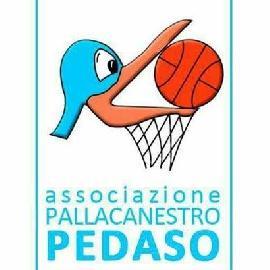 https://www.basketmarche.it/immagini_articoli/19-08-2017/serie-c-silver-la-pallacanestro-pedaso-al-via-con-un-gruppo-profondamente-rinnovato-270.jpg