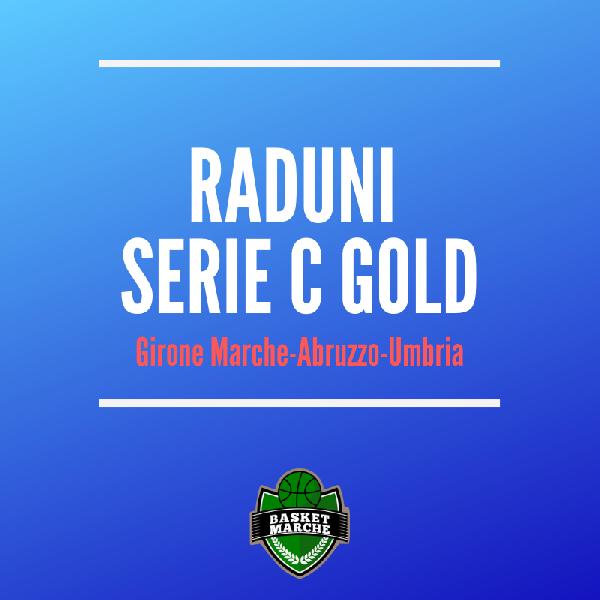 https://www.basketmarche.it/immagini_articoli/19-08-2019/gold-elenco-date-raduni-protagoniste-prossimo-campionato-600.png