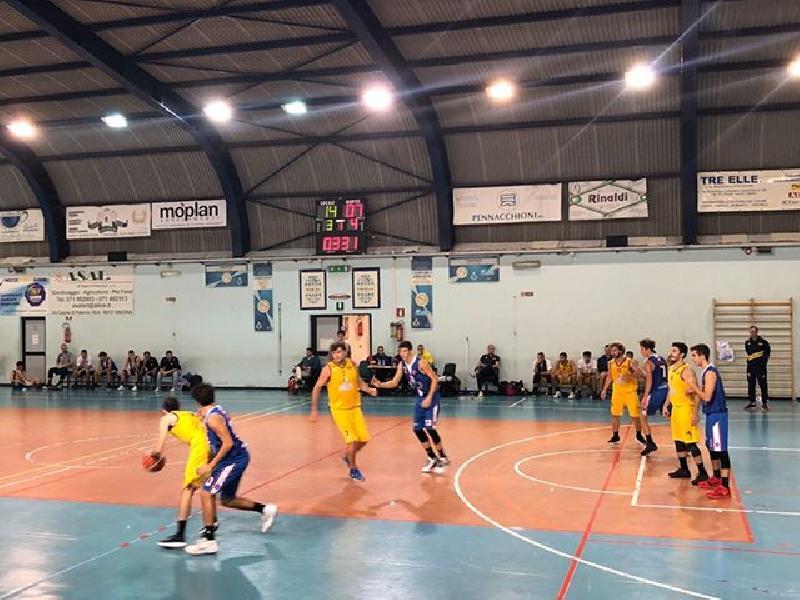 https://www.basketmarche.it/immagini_articoli/19-10-2019/regionale-girone-dinamis-falconara-prima-gioia-basket-giovane-600.jpg