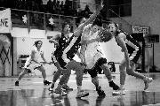 https://www.basketmarche.it/immagini_articoli/19-12-2018/recupero-brutta-sconfitta-interna-feba-civitanova-capolista-campobasso-120.jpg