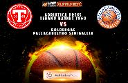 https://www.basketmarche.it/immagini_articoli/20-02-2020/gara-teramo-basket-pallacanestro-senigallia-verr-recuperata-gioved-marzo-120.png
