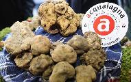 https://www.basketmarche.it/immagini_articoli/20-05-2018/d-regionale-playoff-finali-pallacanestro-acqualagna-strepitose-iniziative-culinarie-in-occasione-di-gara-4-120.jpg