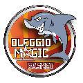 https://www.basketmarche.it/immagini_articoli/20-10-2020/oleggio-basket-sospesa-precauzionale-attivit-prima-squadra-120.jpg