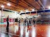 https://www.basketmarche.it/immagini_articoli/21-01-2019/recap-turno-marotta-imbattuto-bene-basket-pupazzi-lupo-120.jpg