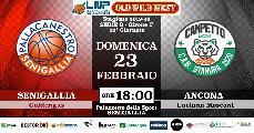 https://www.basketmarche.it/immagini_articoli/22-02-2020/pallacanestro-senigallia-campetto-ancona-derby-vale-punti-120.jpg