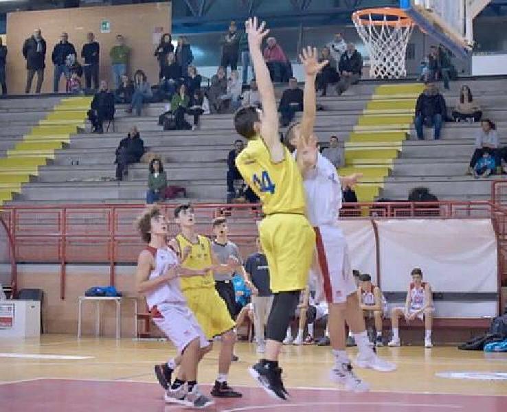 https://www.basketmarche.it/immagini_articoli/22-03-2019/vittoria-carattere-pontevecchio-basket-vuelle-pesaro-600.jpg