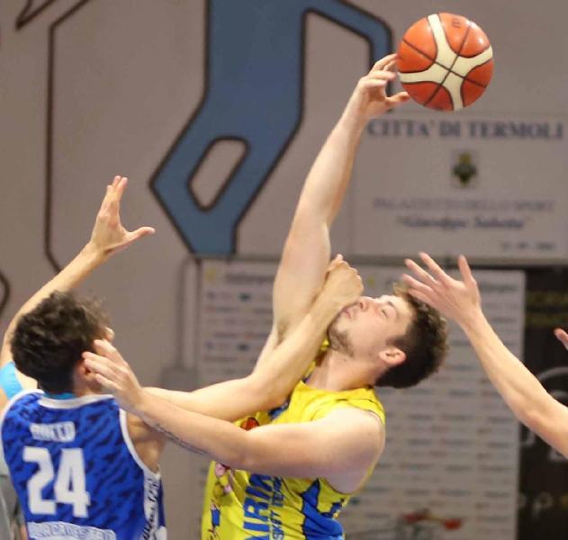 https://www.basketmarche.it/immagini_articoli/22-05-2021/airino-basket-termoli-attesa-derby-molise-young-basket-600.jpg