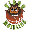https://www.basketmarche.it/immagini_articoli/23-01-2019/vigor-matelica-vittorie-sconfitta-squadre-giovanili-weekend-120.png