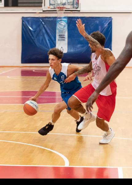 https://www.basketmarche.it/immagini_articoli/23-07-2020/colpo-basket-gualdo-janus-fabriano-arriva-prestito-play-francesco-francavilla-600.jpg