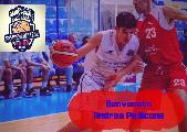 https://www.basketmarche.it/immagini_articoli/23-08-2019/colpo-mercato-sambenedettese-basket-roseto-arriva-andrea-pedicone-120.jpg