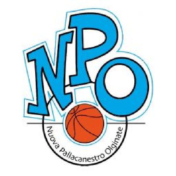 https://www.basketmarche.it/immagini_articoli/23-12-2019/ufficiale-maceratese-giorgio-contigiani-allenatore-olginate-600.jpg
