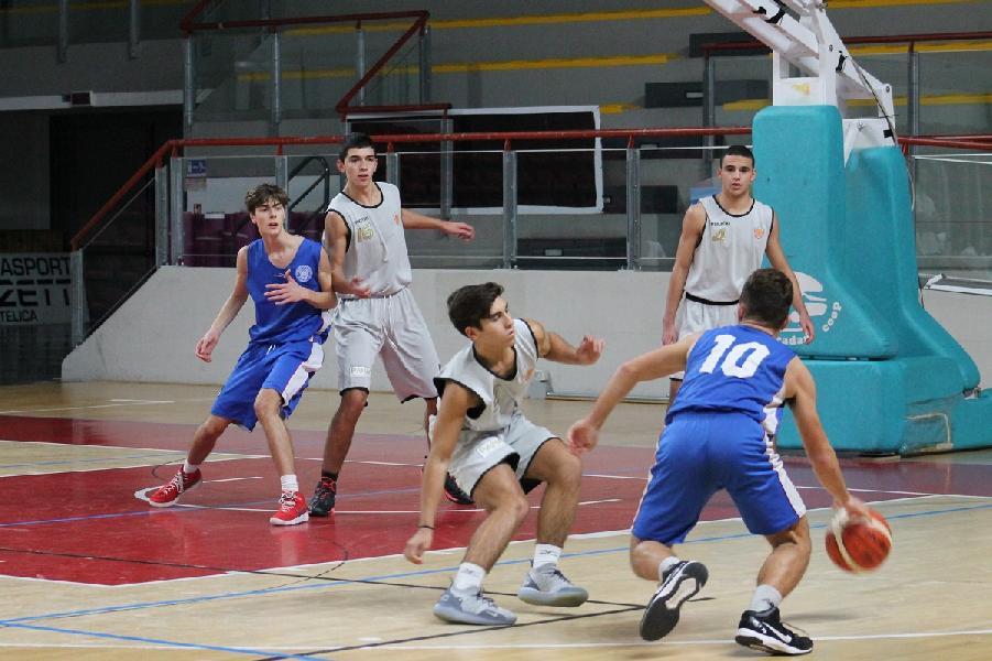 https://www.basketmarche.it/immagini_articoli/24-01-2019/punto-settimanale-sulle-squadre-giovanili-feba-civitanova-600.jpg