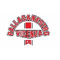 https://www.basketmarche.it/immagini_articoli/24-09-2020/tramarossa-vicenza-sabato-settembre-test-amichevole-unione-basket-padova-120.png