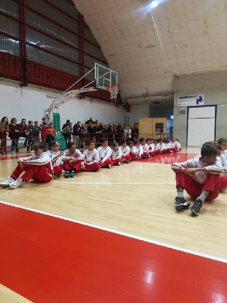 https://www.basketmarche.it/immagini_articoli/24-10-2018/basket-maceratese-iniziata-pieno-ritmo-attivit-settore-giovanile-600.jpg