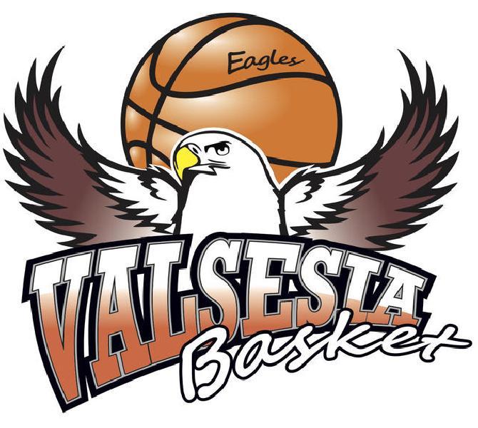 https://www.basketmarche.it/immagini_articoli/25-03-2020/valsesia-basket-firma-documento-chiedere-sospensione-definitiva-campionato-600.jpg