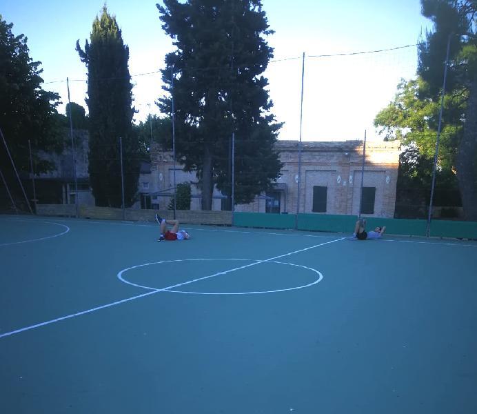https://www.basketmarche.it/immagini_articoli/26-05-2020/ripresa-attivit-giovanile-basket-fermo-massima-sicurezza-600.jpg