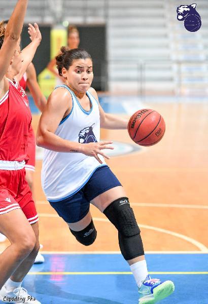 https://www.basketmarche.it/immagini_articoli/26-09-2021/pink-better-league-panthers-roseto-battono-basket-girls-ancona-finale-600.jpg