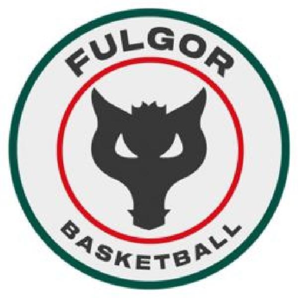 https://www.basketmarche.it/immagini_articoli/27-02-2021/convincente-vittoria-fulgor-omegna-tigers-cesena-600.jpg