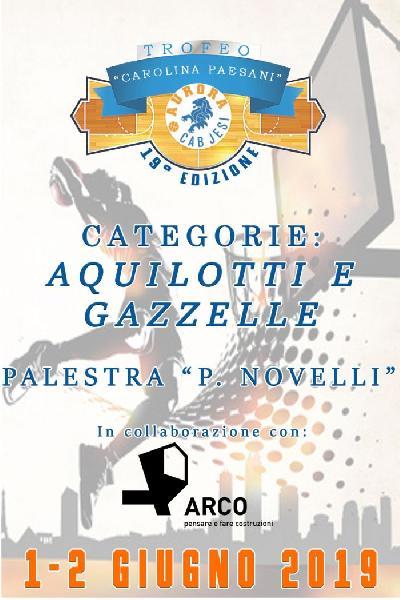 https://www.basketmarche.it/immagini_articoli/27-05-2019/tutto-pronto-jesi-edizione-trofeo-carolina-paesani-600.jpg