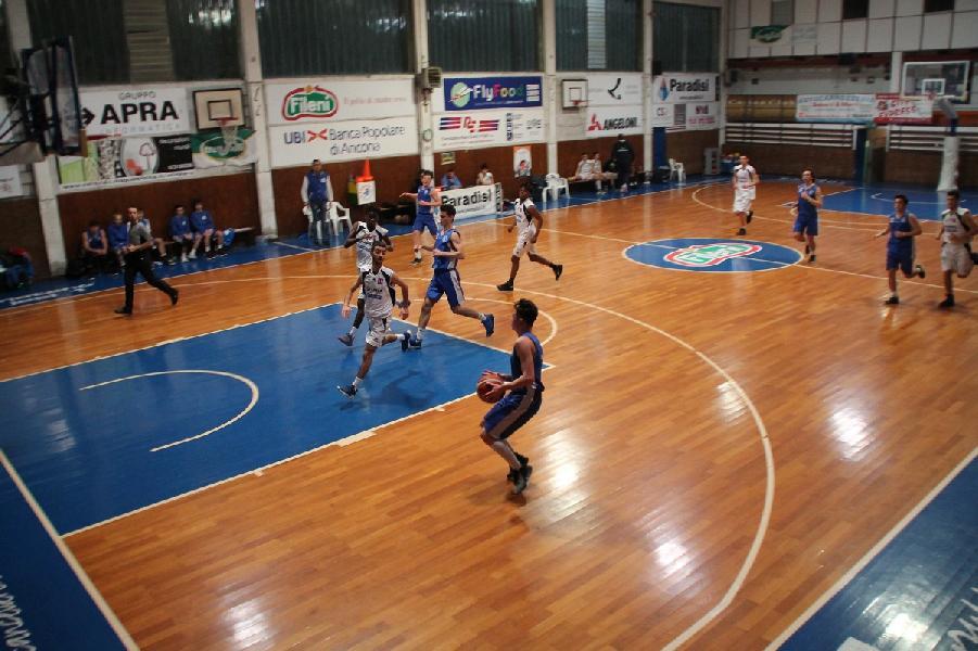 https://www.basketmarche.it/immagini_articoli/28-02-2019/punto-settimanale-sulle-squadre-giovanili-feba-civitanova-600.jpg
