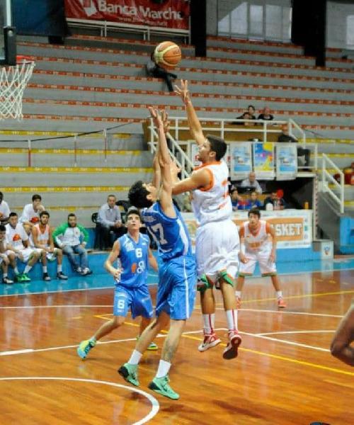 https://www.basketmarche.it/immagini_articoli/28-07-2020/botto-mercato-casa-pallacanestro-acqualagna-ufficiale-arrivo-eugenio-cecchini-600.jpg