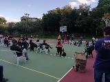 https://www.basketmarche.it/immagini_articoli/28-09-2020/sambenedettese-basket-costruiremo-campo-permettere-giovanili-allenarsi-120.jpg