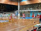 https://www.basketmarche.it/immagini_articoli/29-02-2020/regionale-alessio-magrini-comando-classifica-marcatori-girone-davanti-nasini-bernard-120.jpg