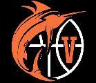 https://www.basketmarche.it/immagini_articoli/29-05-2020/ufficiale-pallacanestro-viola-reggio-calabria-serie-120.jpg