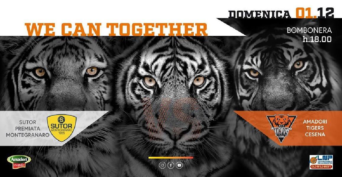 https://www.basketmarche.it/immagini_articoli/30-11-2019/tigers-cesena-lanciano-sfida-sutor-montegranaro-600.jpg