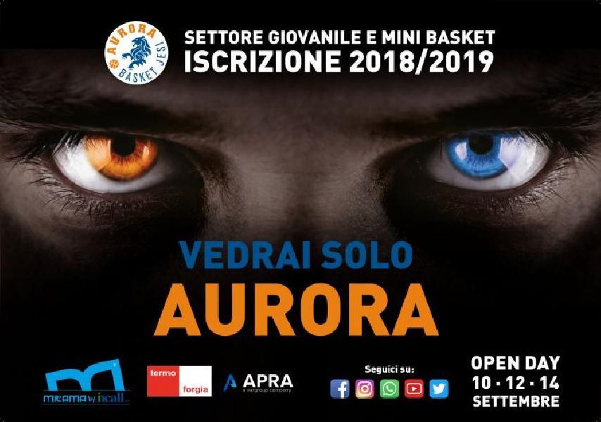 https://www.basketmarche.it/immagini_articoli/31-08-2018/giovanili-minibasket-attivit-giovanile-aurora-jesi-ripartono-notte-azzurra-open-600.jpg