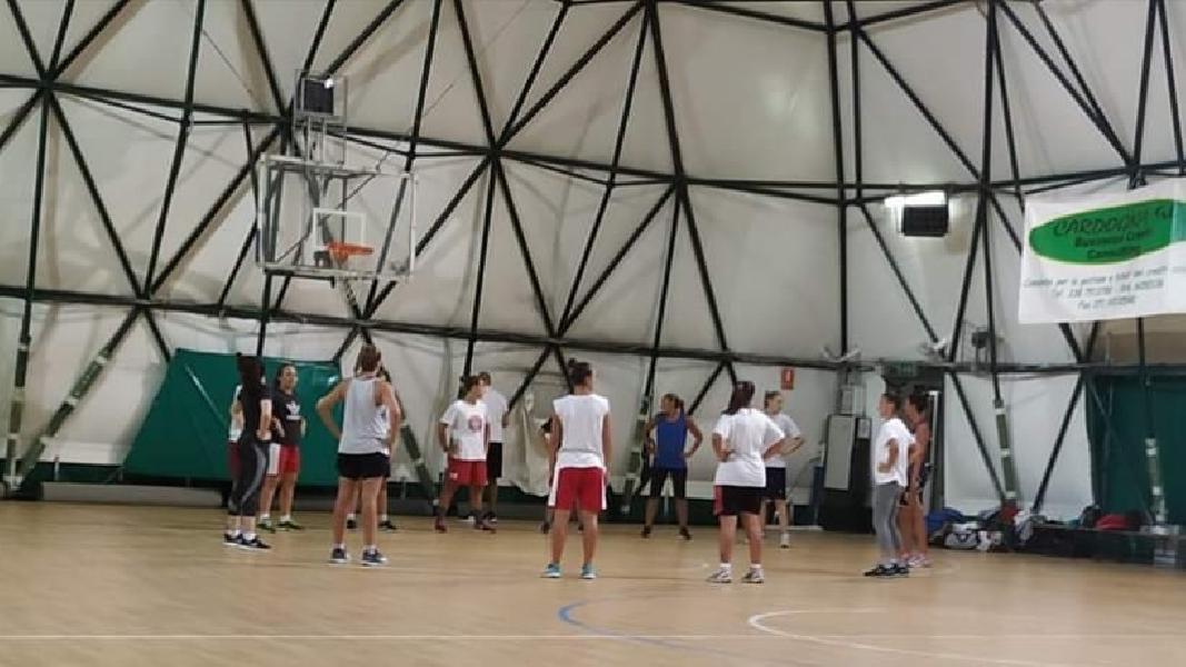 https://www.basketmarche.it/immagini_articoli/31-10-2019/ancona-pronto-debutto-campo-porto-giorgio-basket-600.jpg