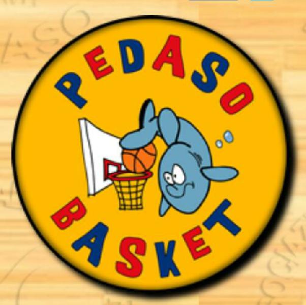 https://www.basketmarche.it/immagini_articoli/31-10-2019/niente-fare-pedaso-basket-milwaukee-becks-montegranaro-600.png