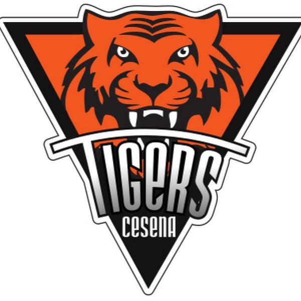 https://www.basketmarche.it/immagini_articoli/31-10-2019/tigers-cesena-ricorrono-squalifica-giornate-inflitta-david-brkic-600.jpg