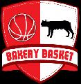 https://www.basketmarche.it/immagini_articoli/31-10-2020/supercoppa-rinvio-sfida-bakery-piacenza-vigevano-120.png