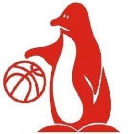 https://www.basketmarche.it/resizer/resize.php?url=https://www.basketmarche.it/immagini_campionati/03-11-2018/1541236795-308-.jpg&size=270x270c0