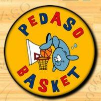 https://www.basketmarche.it/resizer/resize.php?url=https://www.basketmarche.it/immagini_campionati/08-01-2020/1578521498-110-.png&size=201x200c0