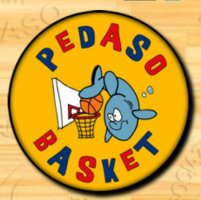 https://www.basketmarche.it/resizer/resize.php?url=https://www.basketmarche.it/immagini_campionati/21-03-2019/1553148204-198-.png&size=201x200c0